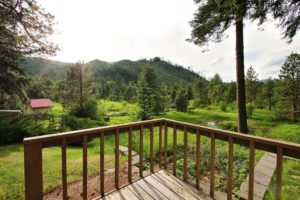 Lodgepole Deck and View