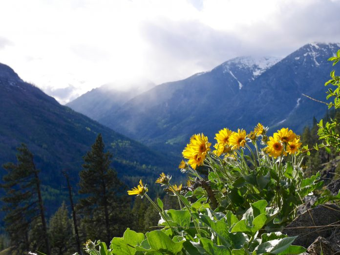 Have an amazing time hiking along the Icicle Ridge Trail.