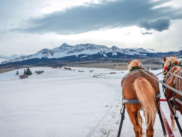 Horse-drawn carriage heading toward mountains.